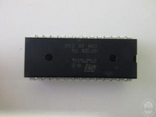 DOG316_5-1.JPG