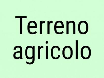 Fig 1 - Terreno agricolo sito in Verru...