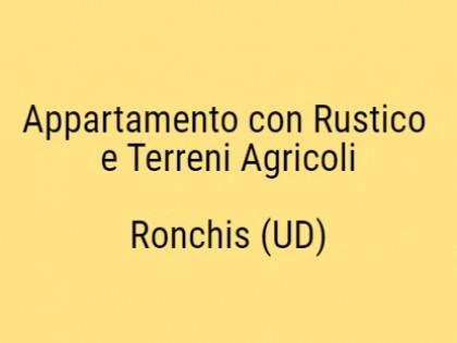 Fig 1 - Lotto: Terreni agricoli in Com...