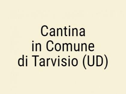 Fig 1 - Fig 1 - Cantina in Comune di Tarvisio...