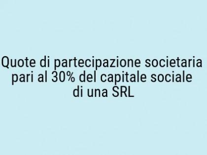 Fig 1 - Fig 1 - Quote di partecipazione societ...