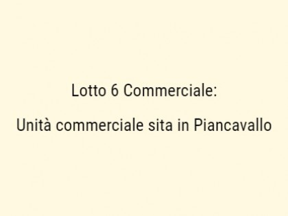 Fig 1 - Fig 1 - a) Unità Commerciale