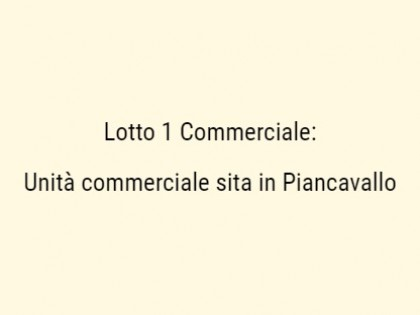 Fig 1 - Fig 1 - Unità Commerciale