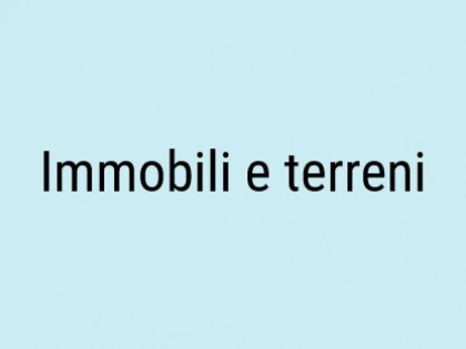 Fig 1 - Fig 1 - Immobili e terreni