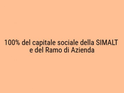 Fig 1 - Fig 1 - 100% del capitale sociale dell...
