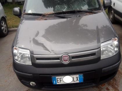 Fig 1 - Fig 1 - AUTOVETTURA FIAT PANDA TG. EF...