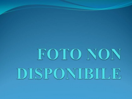 Fig 1 - Fig 1 - PANICALE (PG) LOCALITA' POGGIO...
