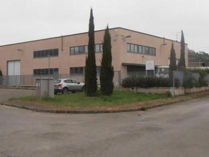 Fig 1 - Fig 1 - Comparto A (Cavriglia via La M...