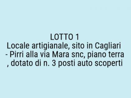 Fig 1 - Fig 1 - Locale artigianale, sito in Ca...