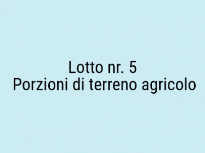 lotto 5.png