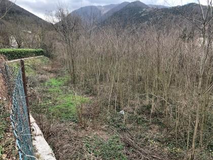 Fig 1 - Fig 1 - Terreno agricolo in CAGLI, loc...