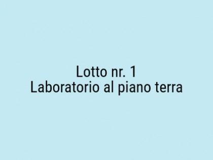 Fig 1 - Fig 1 - Laboratorio al piano terra, co...