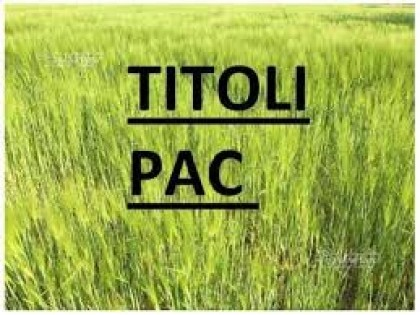 Fig 1 - Fig 1 - c) TITOLO ORDINARIO, NUMERO PR...