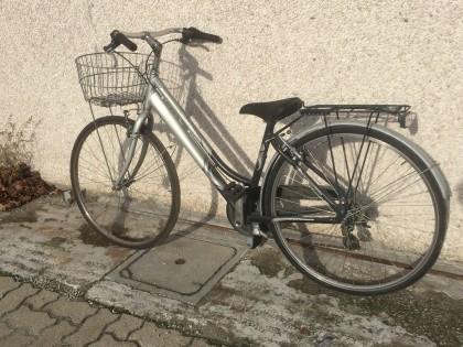 Fig 1 - Fig 1 - (Lotto n.1) City bike da donna...