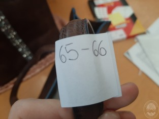 65-66.jpg
