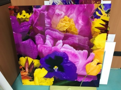 """Fig 1 - Fig 1 - (Lotto 45) """"Flower reflections..."""