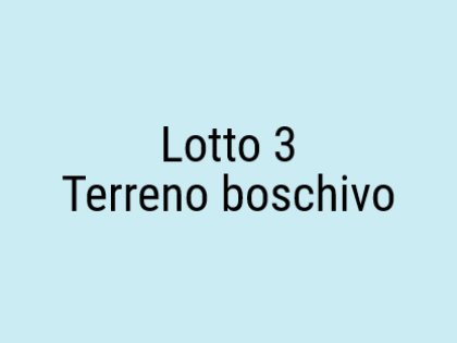 lotto 3.png