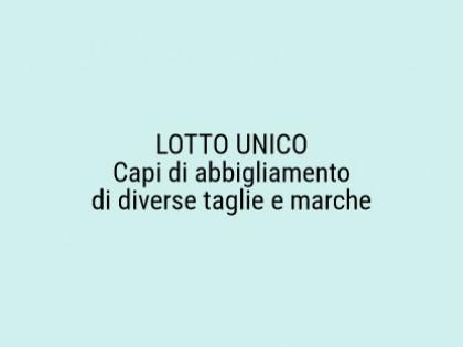 Fig 1 - Fig 1 - CAPI DI ABBIGLIAMENTO DI DIVER...