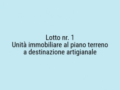 Fig 1 - Fig 1 - Lotto: Unita immobiliare al pi...