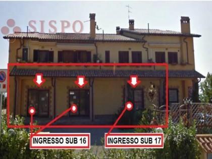 Fig 1 - Fig 1 - MONTE CASTELLO DI VIBIO (PG) V...