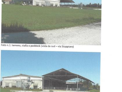 Fig 1 - Fig 1 - Poggio Rusco (MN), Via Tamarel...