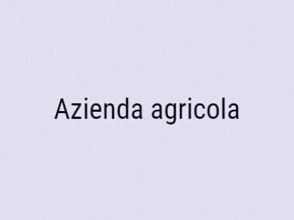 Fig 1 - Fig 1 - Azienda agricola di ha 2,46,95...