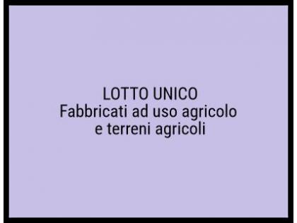 Fig 1 - Fig 1 - Lotto: Fabbricati ad uso agric...