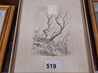 519.jpg