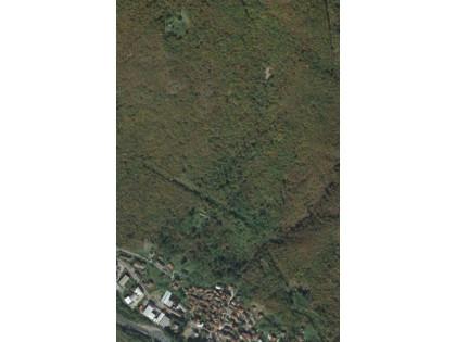 Fig 1 - Fig 1 - n. 1 terreno boschivo (corpo A...