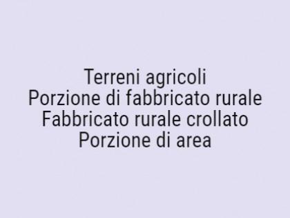 Fig 1 - Fig 1 - Lotto: Terreni agricoli., Porz...