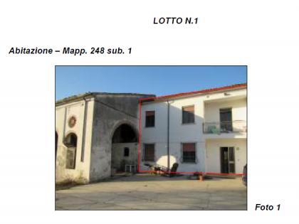 Fig 1 - Fig 1 - Lotto: San Benedetto Po (MN),...