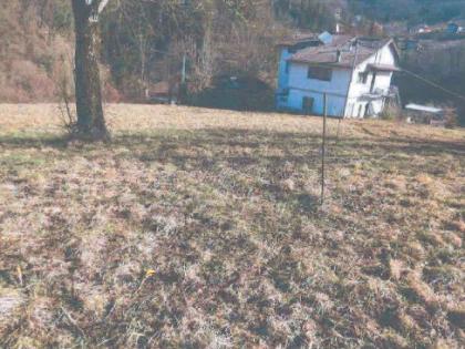 Fig 1 - Fig 1 - Lotto: Appezzamento di terreno...