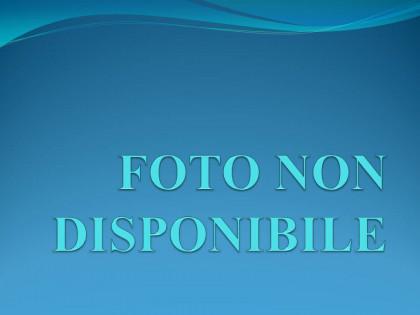 Fig 1 - Fig 1 - RAMO DI AZIENDA
